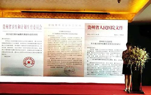 程代薇教授做贵州省整形美容协会筹备工作汇报